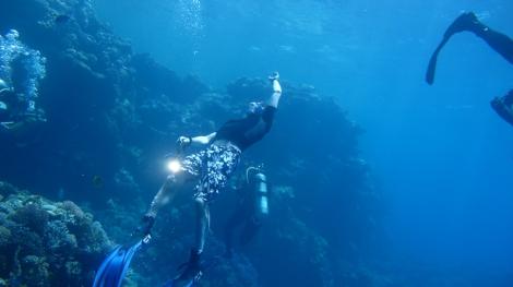 Yuriy free diving